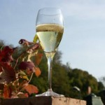 Champagne, tasty bubbles barge cruise